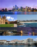 Leo-Collage Sydney.png