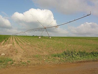 Les Ormes (Vienne) Irrigation.JPG