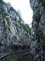 Limestone gorge (1071698794).jpg