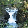 Little Qualicum Falls - panoramio.jpg