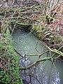 Llanfyrnach mine, waterwheel pit - geograph.org.uk - 656881.jpg