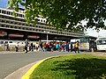 Loading at Cruise ship dock (7671943446).jpg