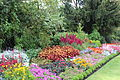 London, St. James's Park IMG 1878.JPG