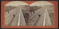 Looking across top of R.R. Bridge, Portage, N.Y., toward Depot, by Walker, L. E., 1826-1916 2.png
