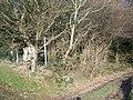 Lost Footpath pointer, Longton Wood - geograph.org.uk - 1080318.jpg