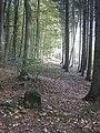 Lothringer Kreuz - panoramio.jpg