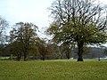 Lough Guile - geograph.org.uk - 361322.jpg