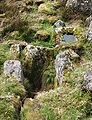 Lower blowing house, River Walkham - furnace, float & mould.jpg