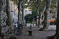 Lucca Piazza Napolione.JPG