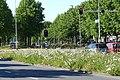 Lunetstraat, Breda P1490056.jpg