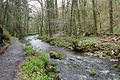 Lydford, the river Lyd - geograph.org.uk - 774649.jpg