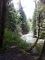 Lynn valley may 2012 - panoramio.jpg