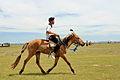 Młodzi jeźdźcy podczas mongolskich zawodów jeździeckich na lokalnym festiwalu Naadam (03).jpg