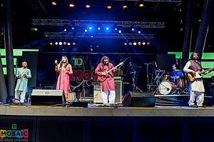 Mekaal Hasan Band - Mekaal Hasan Band - Live in Canada at Celebration Square, Mississauga