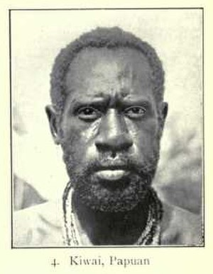 Negroid - Kiwai man, Papuan type