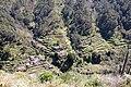 Madeira - Interior.jpg