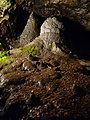 Magura cave, Hall of the stalactones - beehives - Пещера Магурата, Зала на сталактоните - пчелни кошери - panoramio.jpg