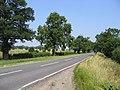 Main Road, Rippingale, Lincs - geograph.org.uk - 259071.jpg