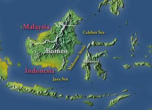 Makassar Strait - The Makassar Strait