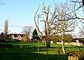 Manor Farm Alderton - geograph.org.uk - 1629178.jpg