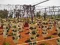 Mapro garden - panoramio.jpg