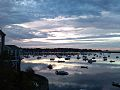 Marblehead Harbor Morning.jpg