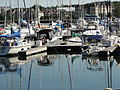 Marina Surgeon Bay Wisconsin.JPG