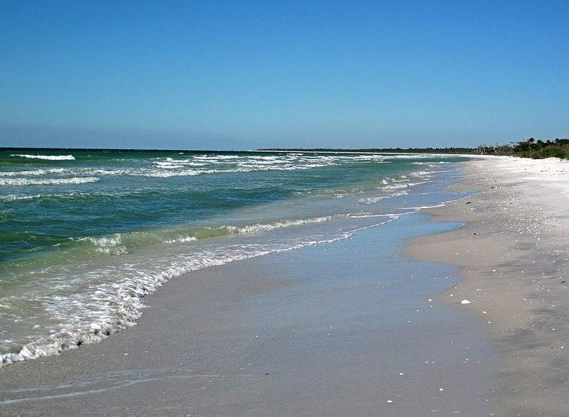 File:Marine shoreline of Cayo Costa Island (Gulf of Mexico coast of Florida, USA) (23771084953).jpg