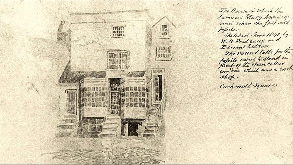 Mary Anning's house and shop in Lyme Regis, drawn in 1842