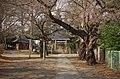Matsuyama Shrine - 松山神社 - panoramio.jpg