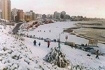 Neve alla piaggia La Perla, Mar del Plata (1991)