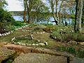 Meadowsweet Herb Garden, Soulseat Loch - geograph.org.uk - 312391.jpg