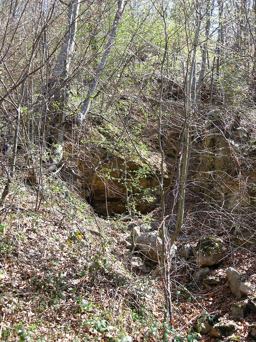 Medvednik - zapadna Srbija - selo Rebelj - okna starog rudnika bakra na Medvedniku 2