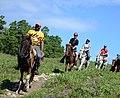 Mega Adventures Horseback Riding.jpg