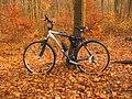 Merida bike.jpg