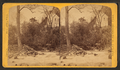 Mill Race, from Robert N. Dennis collection of stereoscopic views.png