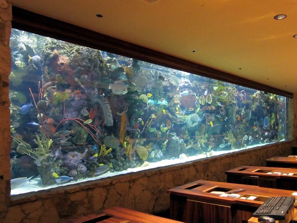 Mirage Aquarium (8226785671)