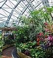 Miyazaki prefecture's Subtropical crop experimental farm. , 宮崎県総合農業試験場 亜熱帯作物支場 - panoramio (3).jpg