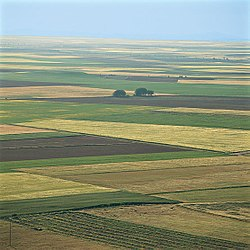 Cultivated fields in northern Valladolid Province