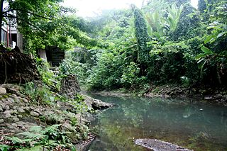 Molawin River river in the Philippines