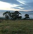 Morning near Malking Tower Farm - panoramio (3).jpg