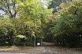 Mount Wilson NSW 2786, Australia - panoramio (20).jpg