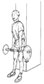 Musculation exercice biceps 1.png