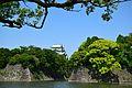 Nagoya castle4.JPG