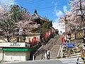 Nara-01.jpg