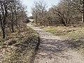 Nationaal Park Kennemerland (40656918814).jpg