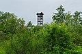 Naturschutzgebiet Koenigsbruecker Heide Haselbergturm 09.jpg