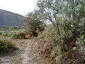Navidhand new 358 - panoramio.jpg