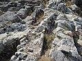 Necrópolis rupestre de San Vitor de Barxacova (Parada de Sil) (7931225830).jpg