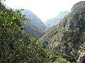 Nedonas Gorge - panoramio.jpg